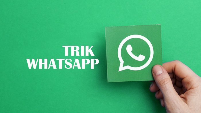Lucu Keren, Download Tema Whatsapp terbaru